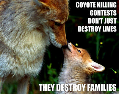 Help End Wildlife Killing Contests